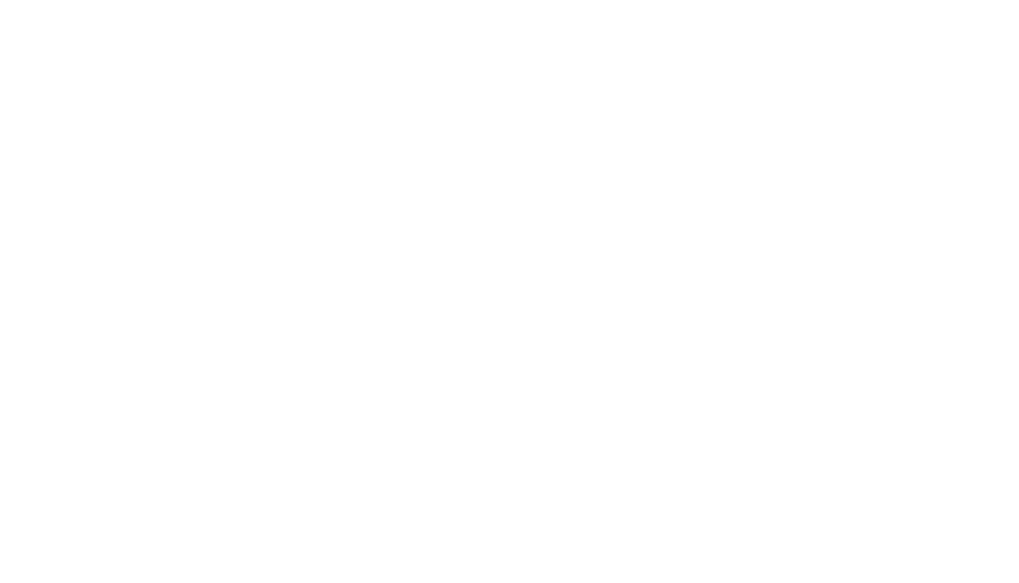 White Logo - White Satin Bridal Boutique Ottawa - Designer & Luxury Wedding Gown